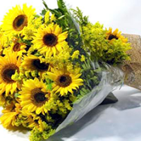 Ramalhetes e Bouquets